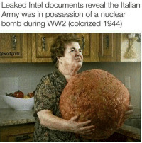 Too much sauce ( @wolfgrillz ): Leaked Intel documents reveal the Italian  Army was in possession of a nuclear  bomb during WW2 (colorized 1944)  wolf grillz Too much sauce ( @wolfgrillz )