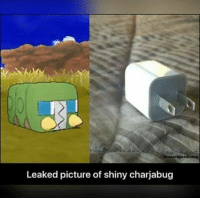 Alolan Charjabug's morphology actually differs from one continent to another 😉 Sent in via DM by FunnyPokemonAmbassador @pokemon.m8 ! Thanks! ___________ Want to become an official FunnyPokemonAmbassador too? Then DM us your best and funniest pokemon memes to feature 😀 ___________ Pokemon Pokémon Nintendo GameFreak PokemonSunandMoon PokemonXY TeamValor TeamMystic TeamInstinct Funny FunnyMemes PokemonGo PokemonGoMemes PokemonMemes Pokemon20 Memes lol ポケットモンスター PokemonMaster PokemonTrainer PokemonFan Gaming GottaCatchemAll GamerLife europe alola australia comics: Leaked picture of shiny charjabug Alolan Charjabug's morphology actually differs from one continent to another 😉 Sent in via DM by FunnyPokemonAmbassador @pokemon.m8 ! Thanks! ___________ Want to become an official FunnyPokemonAmbassador too? Then DM us your best and funniest pokemon memes to feature 😀 ___________ Pokemon Pokémon Nintendo GameFreak PokemonSunandMoon PokemonXY TeamValor TeamMystic TeamInstinct Funny FunnyMemes PokemonGo PokemonGoMemes PokemonMemes Pokemon20 Memes lol ポケットモンスター PokemonMaster PokemonTrainer PokemonFan Gaming GottaCatchemAll GamerLife europe alola australia comics
