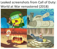 Leaked screenshots from Call of Duty:  World at War remastered (2018)  Polar SaurusRex true gaming meme Double Tap and Tag a Gamer Drop a follow @gamersofinsta