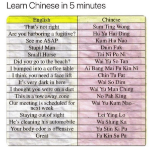 Interesting...: Learn Chinese in 5 minutes  Chinese  Sum Ting Wong  Hu Yu Hai Ding  English  That's not right  Are you harboring a fugitive?  See me ASAP  Kum Hia Nao  Stupid Man  Dum Fuk  Tai Ni Po Ni  Small Horse  Did you go to the beach?  I bumped into a coffee table  I think you need a face lift  It's very dark in here  I thought you were on a diet  This is a tow away zone  Our meeting is scheduled for  next week  Staying out of sight  He's cleaning his automobile  Your body odor is offensive  Wai Yu So Tan  Ai Bang Mai Fu Kin Ni  Chin Tu Fat  Wai So Dim  Wai Yu Mun Ching  No Pah King  Wai Yu Kum Nao  Lei Ying Lo  Wa Shing Ka  Yu Stin Ki Pu  Fa Kin Su Pa  Great Interesting...