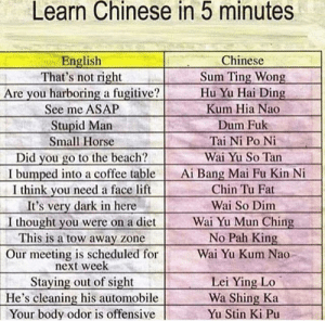 EZ Mandarin Classes: Learn Chinese in 5 minutes  English  That's not right  Are you harboring a fugitive?  Chinese  Sum Ting Wong  Hu Yu Hai Ding  See me ASAP  Kum Hia Nao  Stupid Man  Small Horse  Dum Fuk  Tai Ni Po Ni  Did you go to the beach?  I bumped into a coffee table  I think you need a face lift  It's very dark in here  I thought you were on a diet  This is a tow away zone  Wai Yu So Tan  Ai Bang Mai Fu Kin Ni  Chin Tu Fat  Wai So Dim  Wai Yu Mun Ching  No Pah King  Our meeting is scheduled for  next week  Wai Yu Kum Nao  Staying out of sight  He's cleaning his automobile  Your body odor is offensive  Lei Ying Lo  Wa Shing Ka  Yu Stin Ki Pu EZ Mandarin Classes