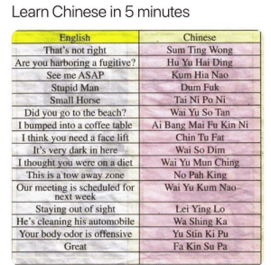 Dude, this works...: Learn Chinese in 5 minutes  English  That's not right  Are you harboring a fugitive?  Chinese  Sum Ting Wong  Hu Yu Hai Ding  Kum Hia Nao  See me ASAP  Stupid Man  Dum Fuk  Tai Ni Po Ni  Small Horse  Did you go to the beach?  I bumped into a coffee table  I think you need a face lift  It's very dark in here  I thought you were on a diet  This is a tow away zone  Wai Yu So Tan  Ai Bang Mai Fu Kin Ni  Chin Tu Fat  Wai So Dim  Wai Yu Mun Ching  No Pah King  Our meeting is scheduled for  next week  Wai Yu Kum Nao  Staying out of sight  He's cleaning his automobile  Your body odor is offensive  Great  Lei Ying Lo  Wa Shing Ka  Yu Stin Ki Pu  Fa Kin Su Pa Dude, this works...