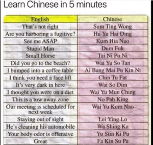 Yes, sum ting wong: Learn Chinese in 5 minutes  English  That's not right  Are you harboring a fugitive?  Chinese  Sum Ting Wong  Hu Yu Hai Ding  Kum Hia Nao  See me ASAP  Stupid Man  Small Horse  Did you go to the beach?  I bumped into a coffee table  I think you need a face lift  It's very dark in here  I thought you were on a diet  This is a tow away zone  Our meeting is scheduled for  next week  Dum Fuk  Tai Ni Po Ni  Wai Yu So Tan  Ai Bang Mai Fu Kin Ni  Chin Tu Fat  Wai So Dim  Wai Yu Mun Ching  No Pah King  Wai Yu Kum Nao  Staying out of sight  He's cleaning his automobile  Your body odor is offensive  Great  Lei Ying Lo  Wa Shing Ka  Yu Stin Ki Pu  Fa Kin Su Pa Yes, sum ting wong