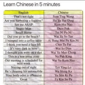 I so despise this because i cringed hard inside.: Learn Chinese in 5 minutes  English  That's not right  Are you harboring a fugitive?  See me ASAP  Chinese  Sum Ting Wong  Hu Yu Hai Ding  Kum Hia Nao  Stupid Man  Small Horse  Dum Fuk  Tai Ni Po Ni  Did you go to the beach?  I bumped into a coffee table  I think you need a face lift  It's very dark in here  I thought you were on a diet  This is a tow away zone  Wai Yu So Tan  Ai Bang Mai Fu Kin Ni  Chin Tu Fat  Wai So Dim  Wai Yu Mun Ching  No Pah King  Our meeting is scheduled for  next week  Staying out of sight  He's cleaning his automobile  Your body odor is offensive  Wai Yu Kum Nao  Lei Ying Lo  Wa Shing Ka  Yu Stin Ki Pu  Great  Fa Kin Su Pa I so despise this because i cringed hard inside.