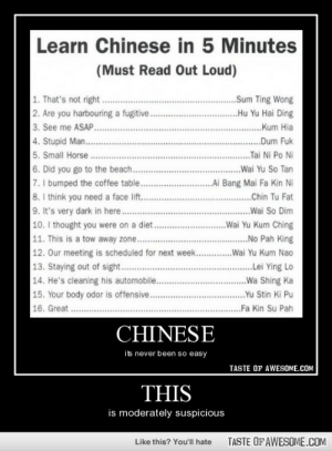 Thishttp://omg-humor.tumblr.com: Learn Chinese in 5 Minutes  (Must Read Out Loud)  1. That's not right.  2. Are you harbouring a fugitive.  3. See me ASAP .  4. Stupid Man...  5. Small Horse.  6. Did you go to the beach...  7. I bumped the coffee table..  8. I think you need a face lift..  9. It's very dark in here.  10. I thought you were on a diet.  11. This is a tow away zone...   12. Our meeting is scheduled for next week.  13. Staying out of sight...  14. He's cleaning his automobile...  15. Your body odor is offensive...  16. Great .  ..Sum Ting Wong  .Hu Yu Hai Ding  . Kum Hia  .  ...Dum Fuk  Tai Ni Po Ni  ..Wai Yu So Tan  ..Ai Bang Mai Fa Kin Ni  .Chin Tu Fat  .Wai So Dim  ..Wai Yu Kum Ching  .No Pah King  .Wai Yu Kum Nao  .  .Lei Ying Lo  ..Wa Shing Ka  ...Yu Stin Ki Pu  Fa Kin Su Pah  CHINESE  its never been so easy  TASTE OF AWESOME.COM  THIS  is moderately suspicious  TASTE OF AWESOME.COM  Like this? You'll hate Thishttp://omg-humor.tumblr.com