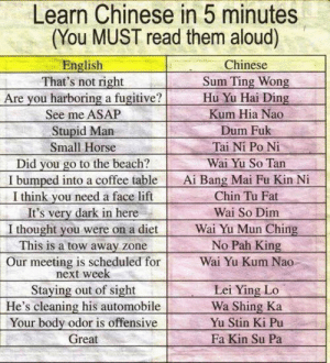 srsfunny:Learn Chinese In Five Minutes: Learn Chinese in 5 minutes  (You MUST read them aloud)  English  That's not right  Are you harboring a fugitive?  See me ASAP  Stupid Marn  Small Horse  Did you go to the beach?  I bumped into a coffee table  I think vou need a face lift  It's very dark in here  I thought you were on a diet  This is a tow away zone  Our meeting is scheduled for  Chinese  Sum Ting Wong  Hu Yu Hai Ding  Kum Hia Nao  Dum Fuk  Tai Ni Po Ni  Wai Yu So Tan  Ai Bang Mai Fu Kin N  Chin Tu Fat  Wai So Dim  Wai Yu Mun Ching  No Pah King  Wai Yu Kum Nao  next week  Staying out of sight  He's cleaning his automobile  Your body odor is offensive  Great  Lei Ying Lo  Wa Shing Ka  Yu Stin Ki Pu  Fa Kin Su Pa srsfunny:Learn Chinese In Five Minutes