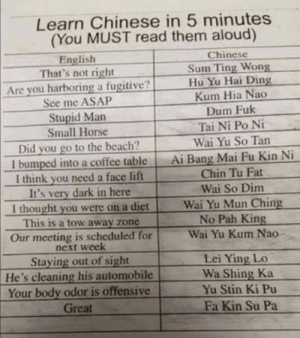 Chinese translation for English speakers by Mono_420 FOLLOW 4 MORE MEMES.: Learn Chinese in 5 minutes  (You MUST read them aloud)  Chinese  Sum Ting Wong  Hu Yu Hai Ding  Kum Hia Nao  Dum Fuk  Tai Ni Po Ni  Wai Yu So Tan  Ai Bang Mai Fu Kin Ni  Chin Tu Fat  English  That's not right  Are you harboring a fugitive?  See me ASAP  Stupid Man  Small Horse  Did you go to the beach?  I bumped into a coffee table  I think you need a face lift  It's very dark in here  I thought you were on a diet  This is a tow away zone  Wai So Dim  Wai Yu Mun Ching  No Pah King  Wai Yu Kum Nao  Our meeting is scheduled for  next week  Staying out of sight  He's cleaning his automobile  Your body odor is offensive  Great  Lei Ying Lo  Wa Shing Ka  Yu Stin Ki Pu  Fa Kin Su Pa Chinese translation for English speakers by Mono_420 FOLLOW 4 MORE MEMES.