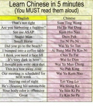 Learn Chinese in five minutes: Learn Chinese in 5 minutes  (You MUST read them aloud)  English  That's not right  Are you harboring a fugitive?  See me ASAP  Stupid Man  Chinese  Sum Ting Wong  Hu Yu Hai Ding  Kum Hia Nao  Dum Fuk  Tai Ni Po Ni  Small Horse  Did you go to the beach?  I bumped into a coffee table  I think you need a face lift  It's very dark in here  I thought you were on a diet  This is a tow away zone  Our meeting is scheduled for  next week  Staying out of sight  He's cleaning his automobile  Your body odor is offensive  Wai Yu So Tan  Ai Bang Mai Fu Kin Ni  Chin Tu Fat  Wai So Dim  Wai Yu Mun Ching  No Pah King  Wai Yu Kum Nao  Lei Ying Lo  Wa Shing Ka  Yu Stin Ki Pu  Fa Kin Su Pa  Great Learn Chinese in five minutes
