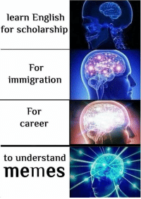Memes, Immigration, and English: learn English  for scholarship  For  immigration  For  career  to understand  memes