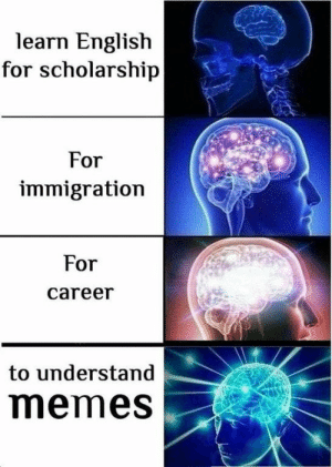 Memes, Immigration, and English: learn English  for scholarship  For  immigration  For  career  to understand  memes selfies of the soul