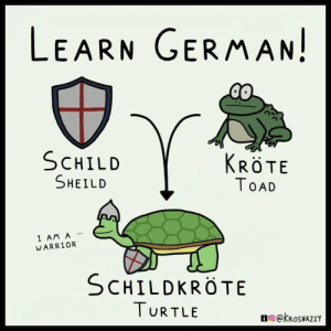Time to learn German.: LEARN GERMAN!  SCHILD  KRÖTE  SHEILD  TOAD  I AM A  WARRIOR  SCHILDKROTE  TURTLE  ekRoSNAZZY Time to learn German.
