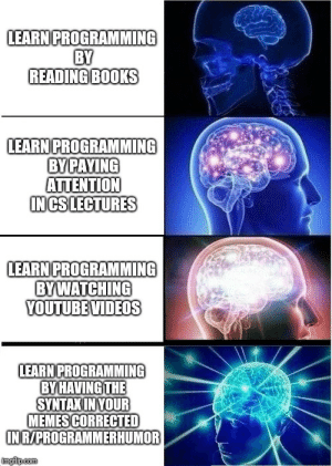 Books, Memes, and Videos: LEARN PROGRAMMING  BY  READING BOOKS  LEARN PROGRAMMING  BY PAYING  ATTENTION  IN CS LECTURES  LEARN PROGRAMMING  BYWATCHING  YOUTUBE VIDEOS  LEARN PROGRAMMING  BY HAVİNGTHE  SYNTAKINYOUR  MEMES CORRECTED  N R/PROGRAMMERHUMOR Not much to do at work today