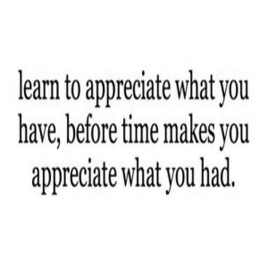 Appreciate, Time, and Net: learn to appreciate what you  have,before time makes you  appreciate what you had https://iglovequotes.net/