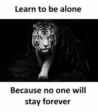 Being alone: Learn to be alone  Because no one will  stay forever