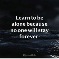 Being Alone, Forever, and Will: Learn to be  alone because  noone will stav  forever  uotesGate