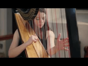 Love, Shit, and Tumblr: learnedtodrown:  c-bassmeow: As much as I love the harp I never knew it could make this song its own. Amazing.  Johann Sebastian Bach Toccata and fugue in D Minor.   Holy Shit. This is mega impressive.