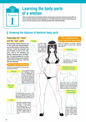 "So this exists apparently: Learning the body parts  of a woman  CHAPTER  Lesson  After we learned about the female skeletal and muscular structure, the next lesson will be on  how to portray and draw female body parts. Let's think about how to draw and portray each  part to suit the character you're drawing and make them look fascinating.  1 Knowing the features of feminine body parts  Separating the ""main""  and the ""sub"" parts  99  The complementary  (sub) feminine body parts  99  66  Fingers  A woman's finger-  tips are mainly  portrayed by using  When drawing a female character, the  3 ""main"" parts that embody feminine-  ness are the breasts, butt and crotch,  and legs. To make the character even  more womanly, we look at the ""sub""  parts, such as the shoulders and  armpits, collarbone, waist, and finger-  tips. By understanding how to draw  those aforementioned parts properly,  you'll be able to make your character  look more charming.  Portray the shoulders and armpits, collarbone,  waist, and fingers to increase your character's  attractiveness.  99  a thin and beautiful  line, making her  gestures look more  feminine and sexy.  Collarbone  99  66  The collarbone is one of the  important aspects in making  the breasts look soft.  The trinity of femininity  Shoulder and area  around the armpits  Let's look at the peculiarities of breasts, legs,  and the butt and crotch.  Like how small breasts repre-  sent intelligence, delicate-  ness and youthfulness, big  breasts, on the other hand,  are a picture of sexiness, live-  liness and also broad-mind-  edness. By also adjusting the  size and droopiness, you can  ingrain age and personality  within your character as well.  Breasts  Since they're close to the breasts  (which is one of the ""main"" parts), it's  important to draw them with a proper  balance in respect to the breasts to  heighten the breasts' attractiveness.  Butt and  crotch  Waist and its  surrounding  Even while wearing pants and/or a skirt,  you can still emphasize the sexiness and  feminineness (of the character) on the  hipline and/or by using some panty shots.  Legs  Females have slender legs with a  noticeable narrowing around  the ankles - or the slightly-  more-chubby-legs-type  contrast to males. With those  in  Unlike the rugged waist of  a male, a female's waist  is slimmer with a deposit  of fatty tissues around  the navel-forming those  charming and  lines.  varying types of the legs, you  can draw a different kind of  ""sexy"" in accordance with your  66  taste.  sensual  28 So this exists apparently"