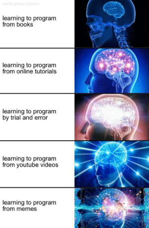 Books, Memes, and Tumblr: learning to program  from books  learning to program  from online tutorials  learning to program  by trial and error  learning to program  from youtube videos  learning to program  from memes programminghumor:   Learning to program