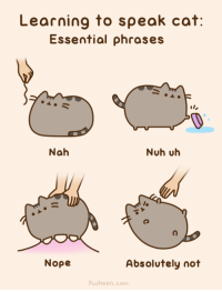 Learning to speak cat:  Essential phrases  Nah  Nuh uh  Nope  Absolutely not  Pusheen.com Animated version: http://pusheen.com/post/82531203258