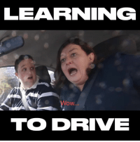 Dank, Driving, and Wow: LEARNING  Wow...  TO DRIVE This kid crashed into the garage on his driving lesson... we all know a driver as safe as him 😂😂  KDVlogs