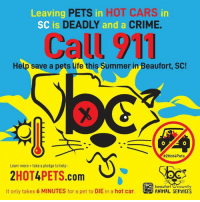 Cars, Crime, and Dogs: Leaving F  SC is  PETS in HOT CARS  and a  in  DEADLY  CRIME.  Call 911  Help save a pets life this Summer in Beaufort, SC!  0  #2Hot4Pets  Learn more take a pledge to help  2HOT4PETS.com  It only takes 6 MINUTES for a pet to DIE in a hot car  beaufort Ocounty  ANIMAL SERVICES I wouldn't think we would need to remind people but it looks like we do.  It is HOT in SC and all across the Country.  DO NOT leave your dogs in a HOT car unattended.