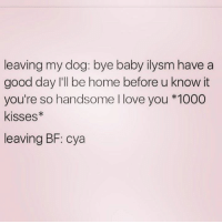 Baby, It's Cold Outside, Dogs, and Love: leaving my dog: bye baby ilysm have a  good day I'll be home before u know it  you're so handsome I love you *1000  Kisses  leaving BF: cya Credit: NorthWitch69