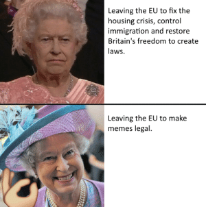 Memes, Control, and Immigration: Leaving the EU to fix the  housing crisis, control  immigration and restore  Britain's freedom to create  laws.  Leaving the EU to make  memes legal. You have to trust us.