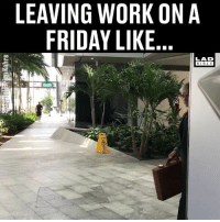 'I'm outta here!' 😂💼: LEAVING WORK ON A  FRIDAY LIKE  LAD  BIBLE 'I'm outta here!' 😂💼