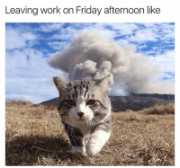 Aaaand this is officially not my problem (@reddit): Leaving work on Friday afternoon like Aaaand this is officially not my problem (@reddit)