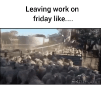 Work On Friday: Leaving work on  friday like  4 GIFS, com