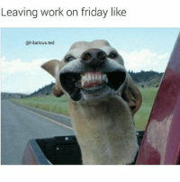 Me right about now 😬😬😬😬: Leaving work on friday like  @hilarious.ted Me right about now 😬😬😬😬