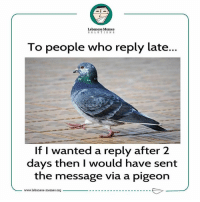 Tag someone that takes forever to reply! 🙃 lebanesememes: Lebanese Memes  SOLUTIONS  To people who reply late...  If I wanted a reply after 2  days then I would have sent  the message via a pigeon  -www1ebanese.memes.org Tag someone that takes forever to reply! 🙃 lebanesememes