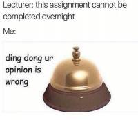 Dong, Lecturer, and Assignment: Lecturer: this assignment cannot be  completed overnight  Me:  ding dong ur  opinion is  wrong
