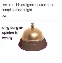 Vegan, Trendy, and Dong: Lecturer: this assignment cannot be  completed overnight  Me:  ding donq ur  ding dong ur  opinion is  wrong I'm gonna go vegan :')