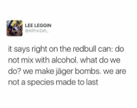 Dank, 🤖, and Lee: LEE LEGGIN  @AllForzah  it says right on the redbull can: do  not mix with alcohol. what do we  do? we make jager bombs. we are  not a species made to last