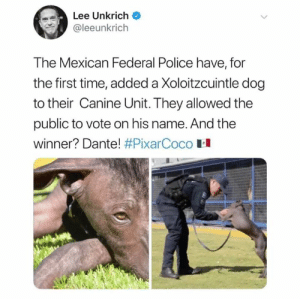 😭😭😭: Lee Unkrich  @leeunkrich  The Mexican Federal Police have, for  the first time, added a Xoloitzcuintle dog  to their Canine Unit. They allowed the  public to vote on his name. And the  winner? Dante! #PixarCoco H 😭😭😭