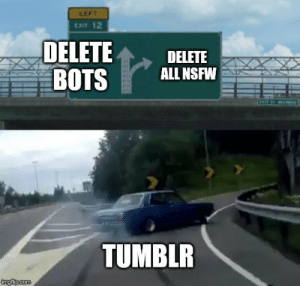 Nsfw, Tumblr, and Will: LEFT  CxIT 12  DELETEDELETE  BOTS ALL NSFW  TUMBLR This will surely stop the bots! /s.