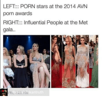 Memes, Porn, and Porn Stars: LEFT: PORN stars at the 2014 AVN  porn awards  RIGHT::: Influential People at the Met  gala...  kantruth