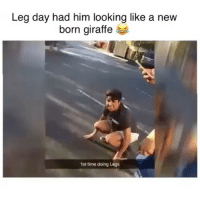 ⠀ 🌱Lmao That's Embarrassing! 😂: Leg day had him looking like a new  born giraffe  1st time doing Legs ⠀ 🌱Lmao That's Embarrassing! 😂