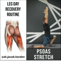 Beautiful, Gym, and Memes: LEG DAY  RECOVERY  ROUTINE  @drjacob harden  PSOAS  STRETCH HOW TO WALK AGAIN AFTER LEG DAY We've all experienced the joy and pain of DOMS after a hard lower body training session. Whether you have a bro split, upper-lower, P-P-L, or some form of DUP, you've probably felt it the next day at some point.😣 . And while shuffling along like an 👴old man or woman is awesome and all, it's nice to be able to function like a healthy human being again. . So, inspired by my own lower body session which I'm currently feeling, here's a little routine you can use to get yourself moving again.💃 . Start out by getting some blood flow. I like to use the bike. Light jogs work well too though. Then hit up these dynamic stretches for the lower body. 10 to 20 reps of each one should have you up and walking again. I know it did for me.✌ . Tag your favorite gym bro and share the wealth! . 🎵 - Davon - Beautiful Day . MyodetoxOrlando Myodetox