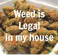 Click, Memes, and My House: Lega  in my house Pipe up with Tommy Chong. Click here to enter to win the Genius Pipe:  https://goo.gl/RYRyw7