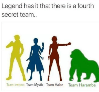 Funny, Instinctive, and Mysticism: Legend has it that there is a fourth  Secret team.  Team Instinct  Team Mystic Team Valor  Team Harambe The Fourth Team