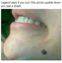 LEGEND IS REAL: Legend says if you turn this photo upside down  you see a shark. LEGEND IS REAL
