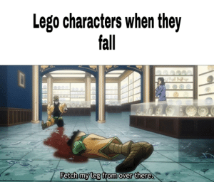 *Insert lego breaking noises*: Lego characters when they  fall  Fetch my leg from over there. *Insert lego breaking noises*