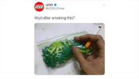 Wyd After Smoking This: LEGO  LEGO  @LEGO-Group  Wyd after smoking this?  @vro.supreme