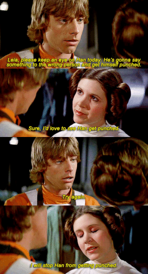 Love, Star Wars, and Tumblr: Leia, please keep an eye on Han today. He's gonna say  something to the wrong person and get himself punched.   Sure, I'd love to see Han get punched   Try again   I will stop Han from getting punched. theprincessleia:  incorrect star wars quotes