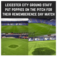 Class 👏👏👏: LEICESTER CITY GROUND STAFF  PUT POPPIES ON THE PITCH FOR  THEIR REMEMBERENCE DAY MATCH Class 👏👏👏