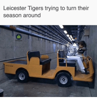 Memes, Rugby, and Ligers: Leicester ligers trying to turn their  season around  RUGBY  MEMES Accurate 😬🐅 rugby leicestertigers bristolbears premrugby