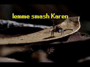 Lemme Smash | Know Your Meme: lemme smash Karen Lemme Smash | Know Your Meme