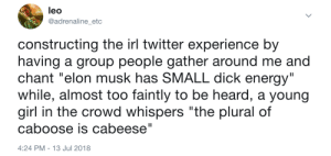 "The Twitter Experience: leo  @adrenaline_etc  constructing the irl twitter experience by  having a group people gather around me and  chant ""elon musk has SMALL dick energy""  while, almost too faintly to be heard, a young  girl in the crowd whispers ""the plural of  caboose is cabeese""  4:24 PM-13 Jul 2018 The Twitter Experience"